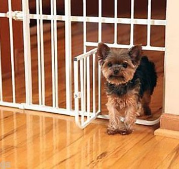 Best Gate Mini Metal Expandable Baby Gate with Pet Door
