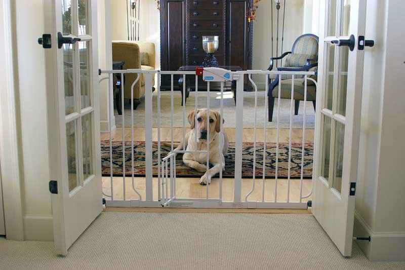 Five Top Baby Gates Equipped With The Door For Pets